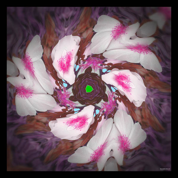 Digital Art - Dancing Rose Petals 57 by Brian Gryphon