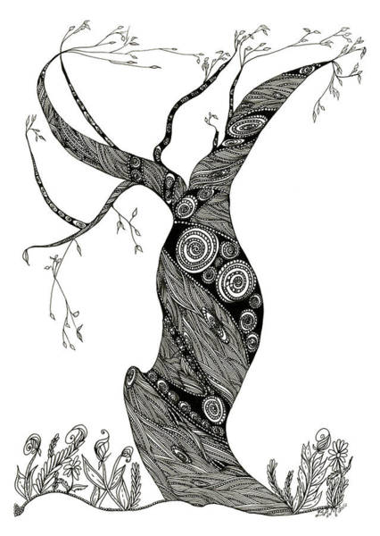 Drawing - Dancing Tree by Barbara McConoughey