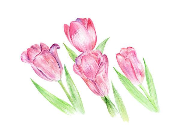 Painting - Dancing Tulips by Elizabeth Lock