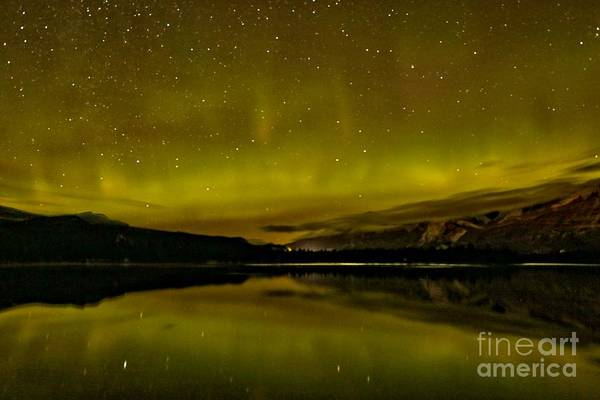 Photograph - Dancing With The Stars by Adam Jewell