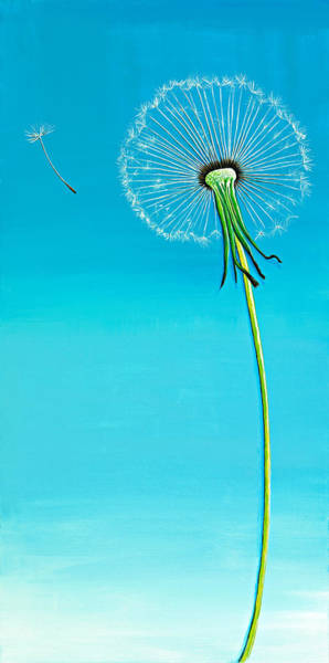 Wall Art - Painting - Dandelion by David Junod