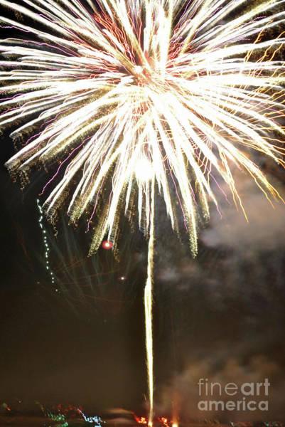 Photograph - Dandelion Firework by George D Gordon III