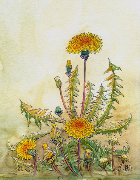 Painting - Dandelions by Katherine Miller