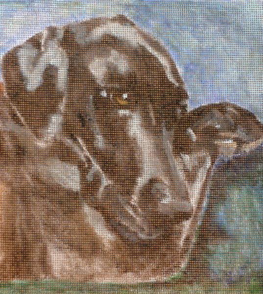 Black Great Dane Painting - Dane by Carol Russell