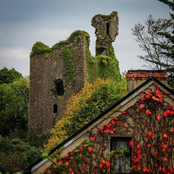 Photograph - Dangan Castle In Ballynacally by James Truett