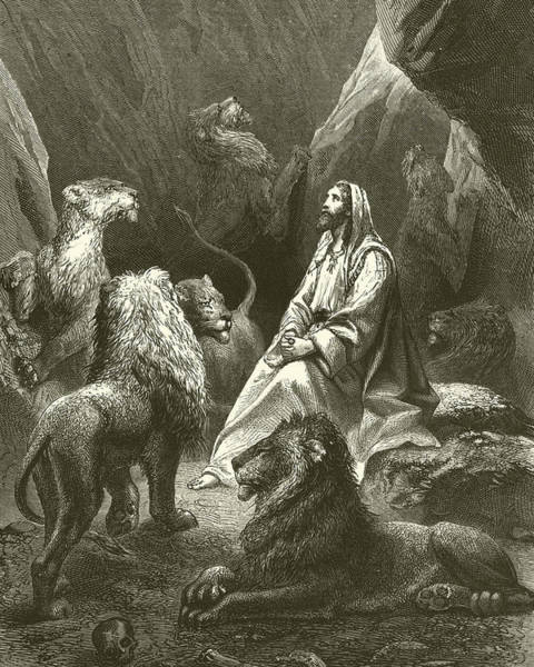 Bible Drawing - Daniel In The Lions' Den by English School