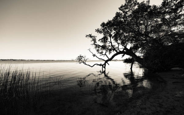 Photograph - Daniel Island Wando River  Black And White by Donnie Whitaker