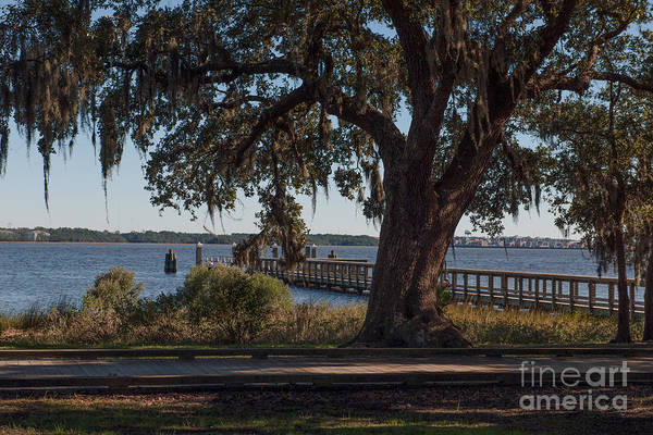 Photograph - Daniel Island Salt Dock by Dale Powell