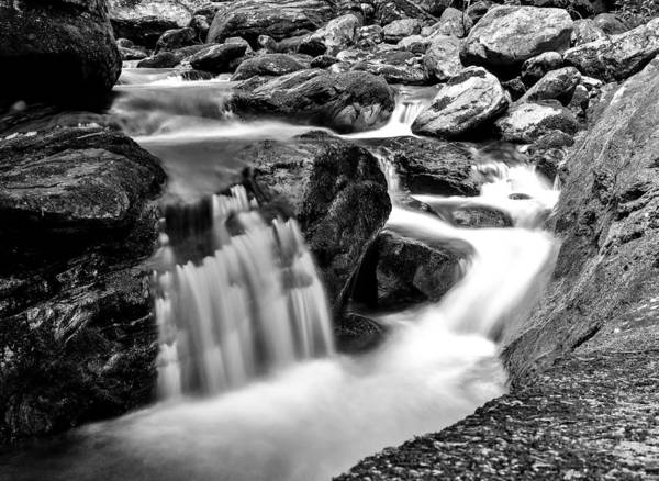 Photograph - Daniel Ridge Creek - Pisgah Forest Nc by Donnie Whitaker