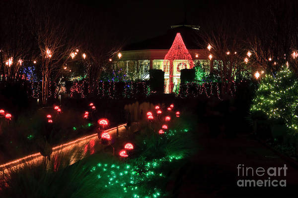 Photograph - Daniel Stowe Pavilion At Christmas by Jill Lang