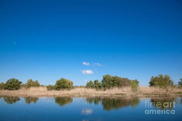 Wall Art - Photograph - Danube Delta by Gabriela Insuratelu
