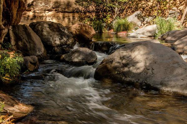 Photograph - Dappled Light On Oak Creek by Teresa Wilson