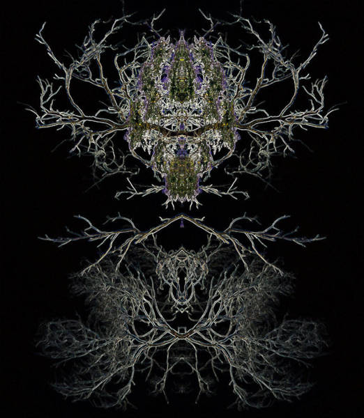 Digital Art - Dark Abstract by Bliss Of Art