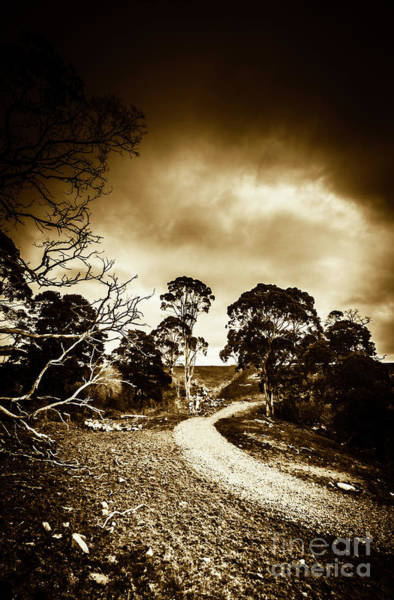 Wall Art - Photograph - Dark And Dim Outback Track by Jorgo Photography - Wall Art Gallery