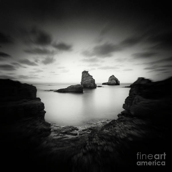 Photograph - Dark Beauty Series 1  by Yucel Basoglu