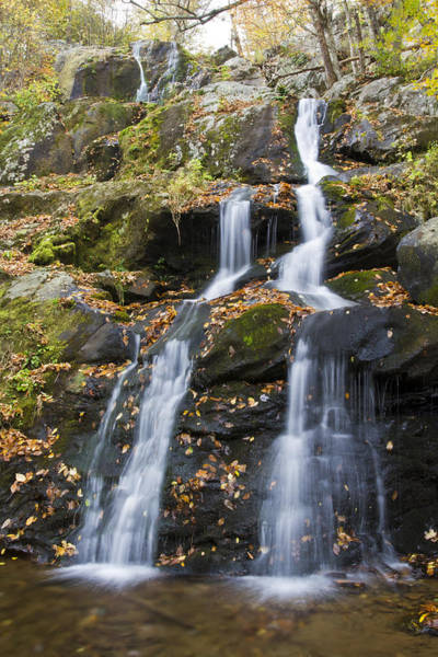 Photograph - Dark Hollow Falls Shenandoah National Park by Pierre Leclerc Photography