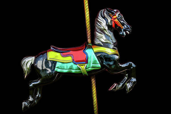Photograph - Dark Horse by Michael Arend