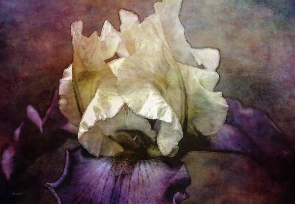 Photograph - Dark Iris 6622 Idp_22 by Steven Ward