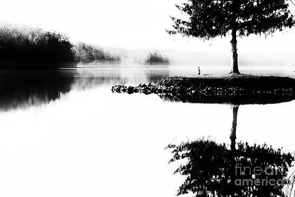Photograph - Dark Island  by Paul W Faust - Impressions of Light