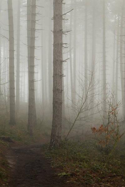 Nottingham Photograph - Dark Journey by Chris Dale