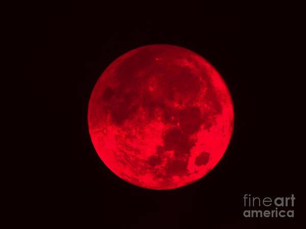 Photograph - Dark Red Full Moon by D Hackett