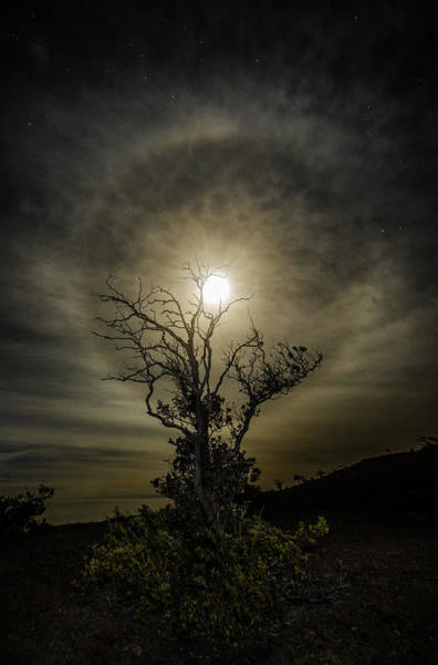 Halo Photograph - Darker Side Of Night  by Sean King