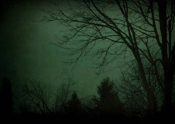 Photograph - Darkness Falls by Patricia Strand