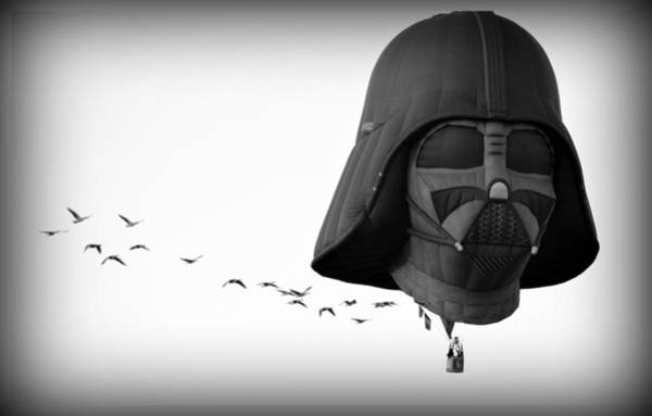 Photograph - Darth And His Flock by AJ Schibig