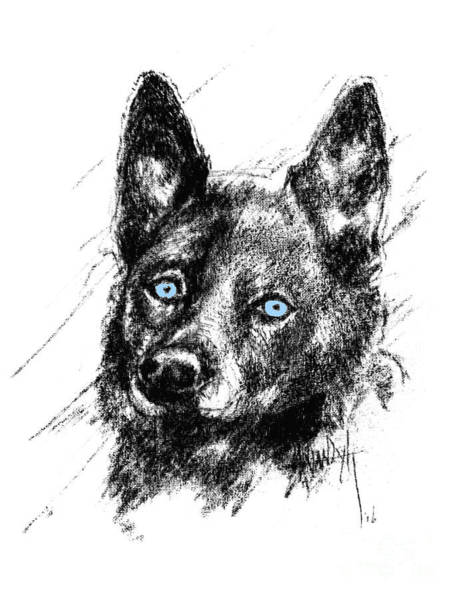 Hund Drawing - Dash - Colored Drawing For Cold Paws by Dorothy Hilde