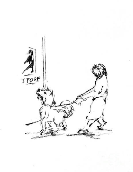 Hund Drawing - Dash Going Back To The Building by Anthony Vandyk