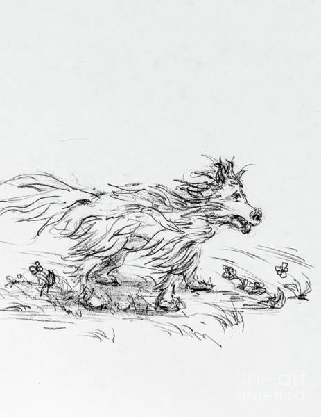 Hund Drawing - Dash In The Wind by Anthony Vandyk