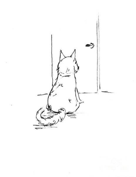Hund Drawing - Dash Waiting To Go Outside by Dorothy Hilde