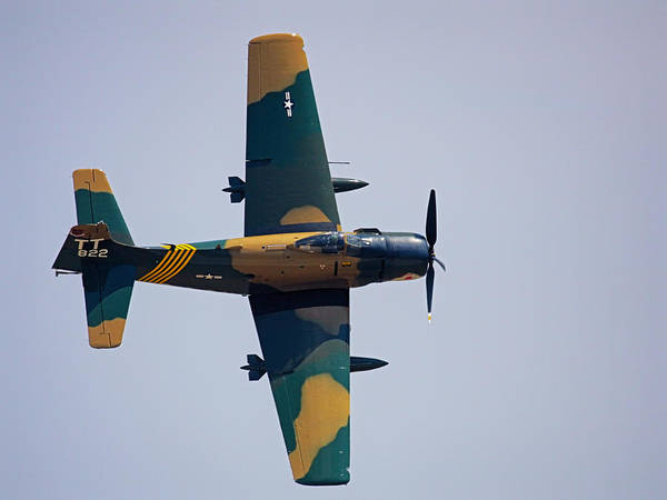 Photograph - Dauntless Dive Bomber by Charles McKelroy