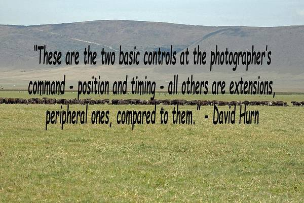 Photograph - David Hurn Quote by Tony Murtagh