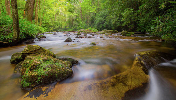 Photograph - Davidson River In Pisgah National Forest by Donnie Whitaker
