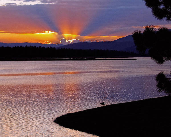Photograph - Davis Lake Sunset by William Havle