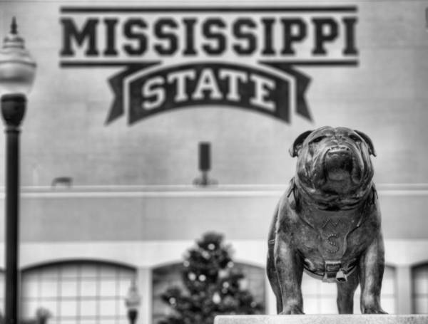 Photograph - Davis Wade Stadium Black And White by JC Findley