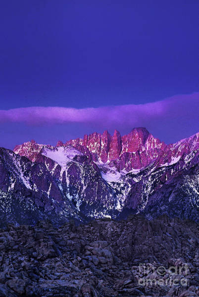 Photograph - Dawn Alpenglow Mount Whitney Eastern Sierras Clifornia by Dave Welling