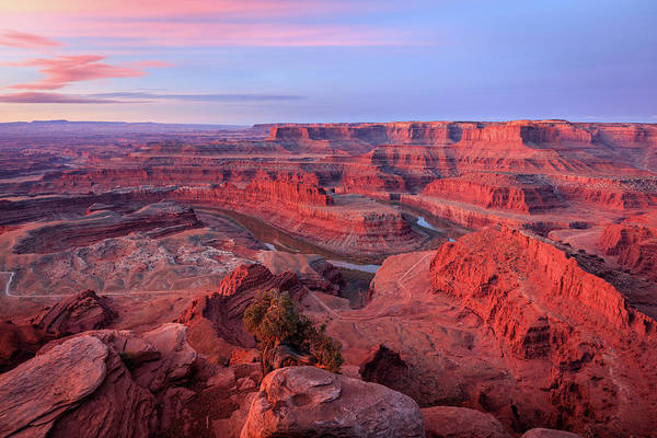 Wall Art - Photograph - Dawn At Dead Horse Point. by Johnny Adolphson