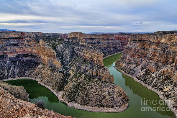 Dawn At Devils Overlook Bighorn Canyon Art Print