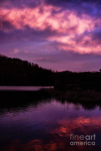 Photograph - Dawn Big Ditch Wildlife Management Area by Thomas R Fletcher
