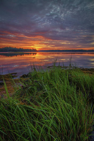 Photograph - Dawn Breaking At Wolfe's Neck Woods by Kristen Wilkinson
