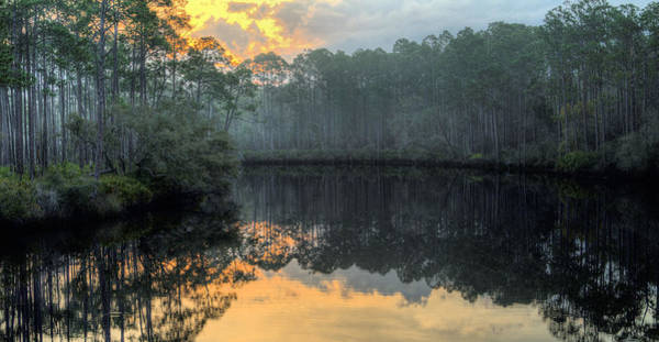 Photograph - Dawn Breaks On Tate's Hell by JC Findley
