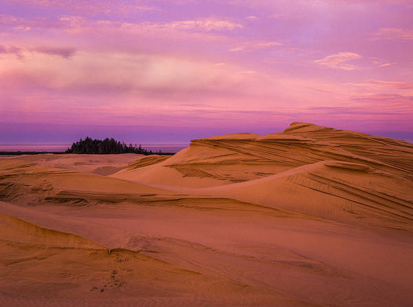 Photograph - Dawn Dunes by Robert Potts