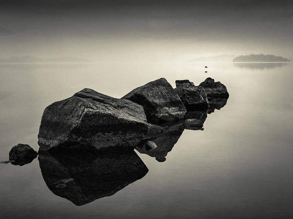 Photograph - Dawn Flight by Dave Bowman