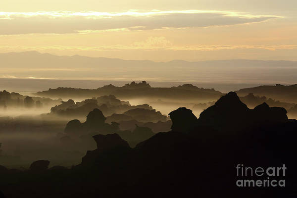 Photograph - Dawn In The Rock Forests Of North Lipez Bolivia by James Brunker