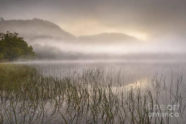 Wall Art - Photograph - Dawn Mist - Loch Achray 1 by Rod McLean