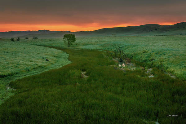 Photograph - Dawn On Cholame Creek by Tim Bryan