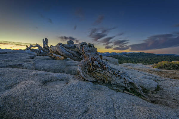 Sentinel Photograph - Dawn On Sentinel by Rick Berk
