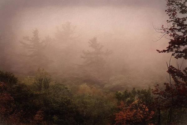Photograph - Dawn by Phyllis Meinke